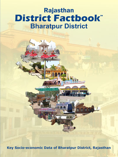 Bharatpur Labour and Workforce, District Level Information of